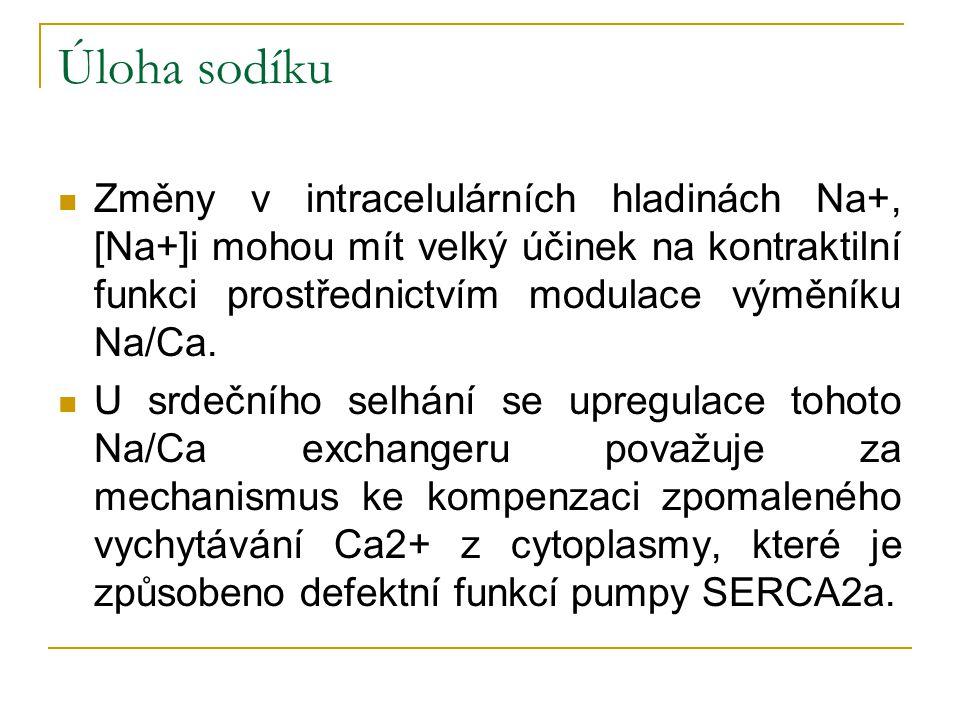 Úloha sodíku Změny v intracelulárních hladinách Na+, [Na+]i mohou mít velký účinek na kontraktilní funkci prostřednictvím modulace výměníku Na/Ca.